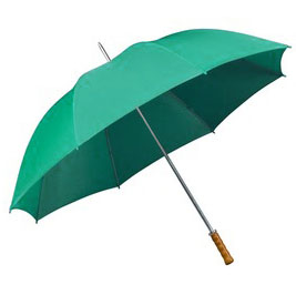 Sea Green budget Golf umbrella